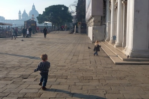 Chasing Pigeons in San Marco