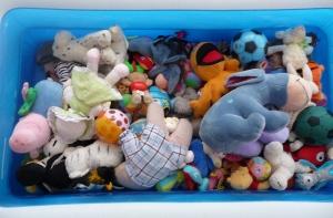 A Paddling Pool full of Teddies: Spot the Children...