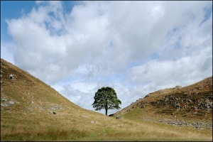Hadrian's Wall - Sycamore Gap - photo by Xavier de Jauréguiberry on Flickr
