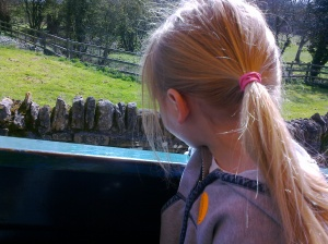 On the Tractor Ride