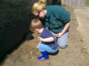 Planting Sunflower Seeds at Sacrewell Farm