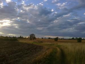 Gorgeous summer evening