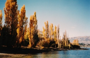 Autumn colours at Wanaka