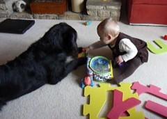 The toy goes here, Kara