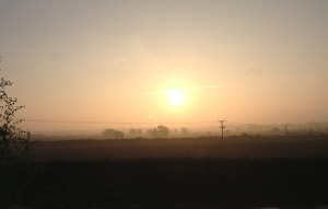 Up at sunrise to write today