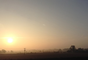 Gorgeous Day