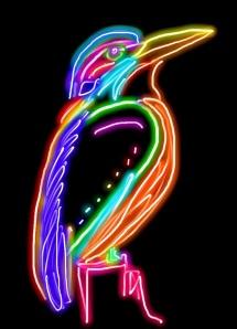 Doodle kingfisher