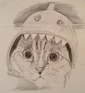 Cat in a shark hat