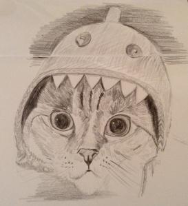 Cat in a shark hat