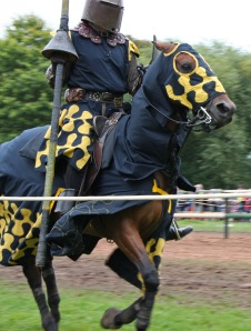 Jousting Dark Knight